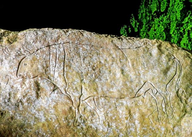 Grotta Del Romito Scopri la Calabria