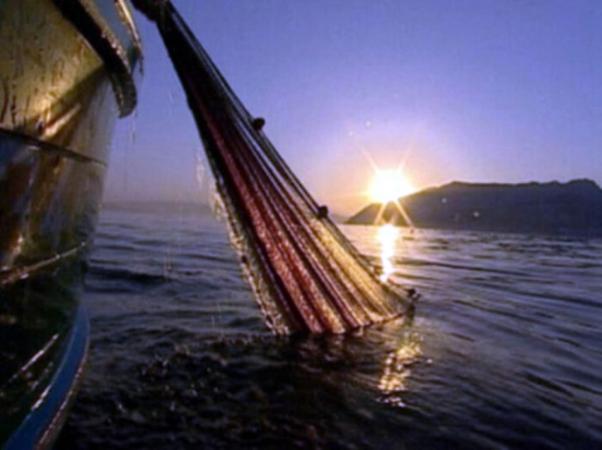Pescaturismo archeotour e sapori di Puglia ITALIA