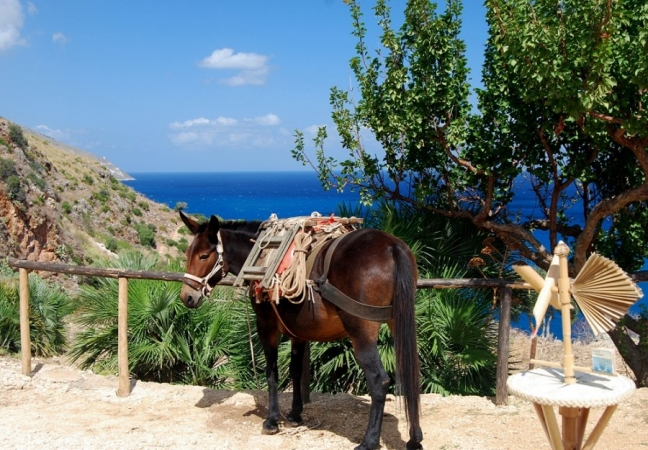Tour sapori e colori nella Sicilia occidentale ITALIA