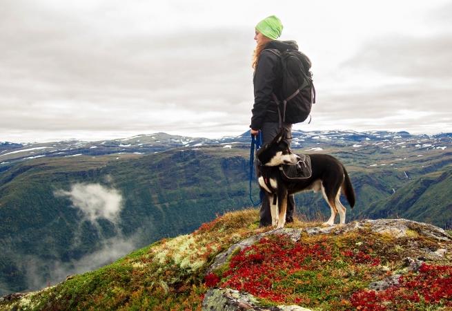 I segreti del nord Lofoten EUROPA