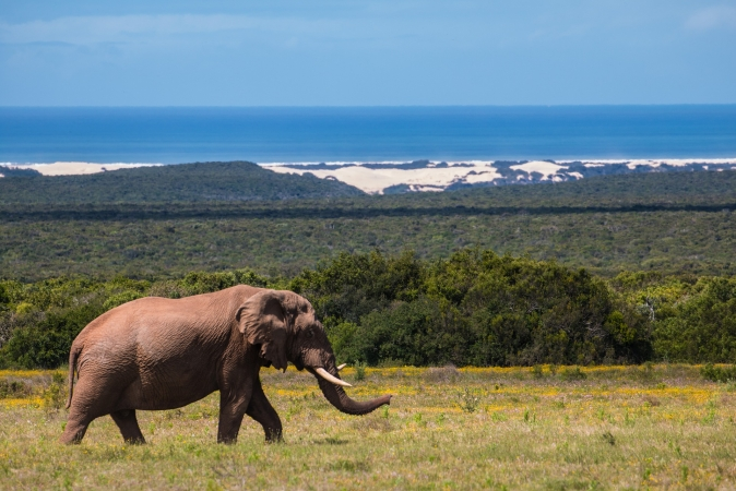 Fly&Drive Sudafrica & Mare Mozambico AFRICA