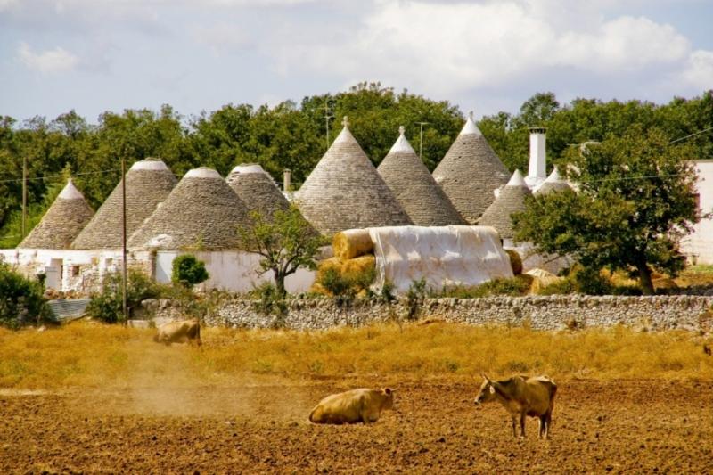 Tour in Puglia tra antichi borghi e masserie