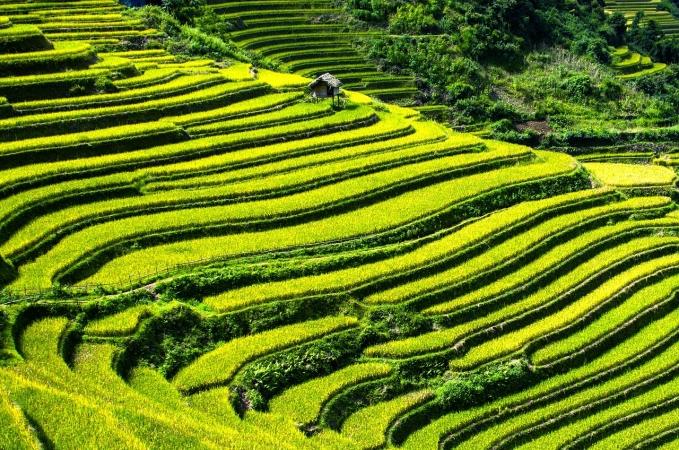 Vietnam fuori dai Sentieri Battuti ASIA