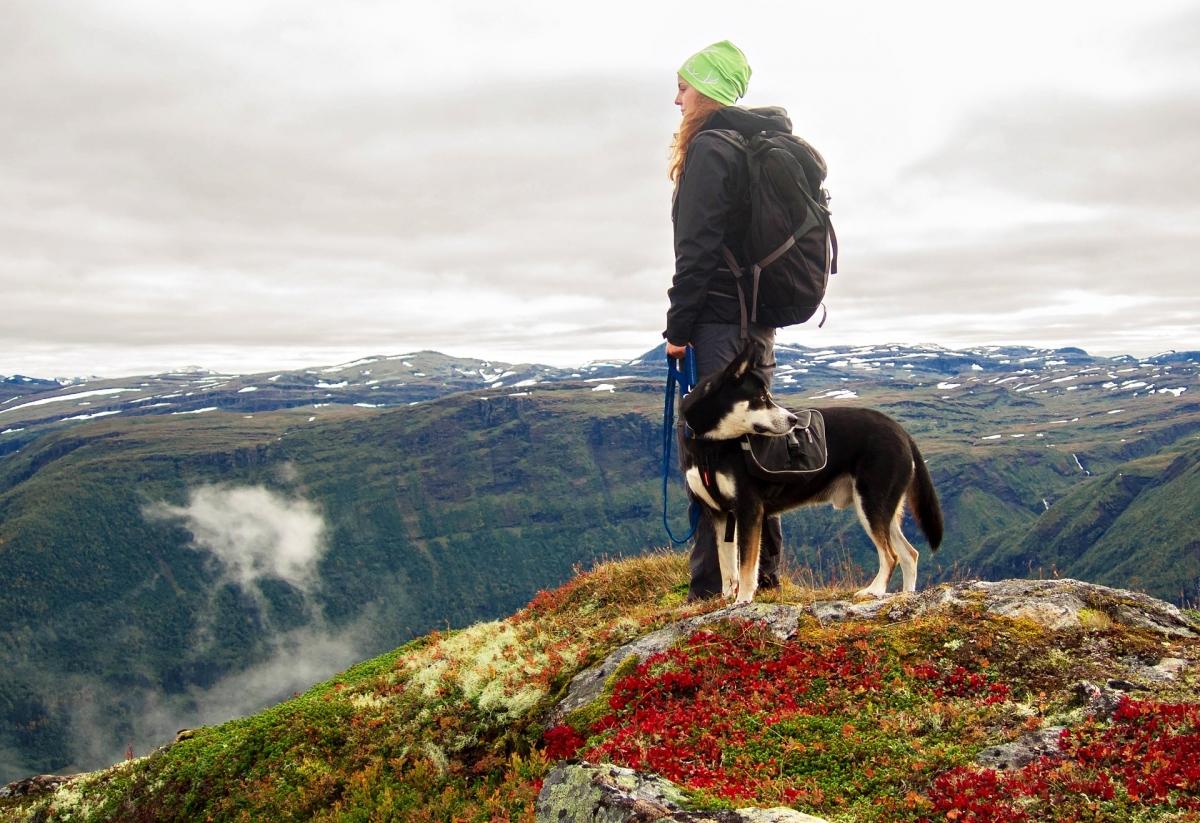 I segreti del nord Lofoten