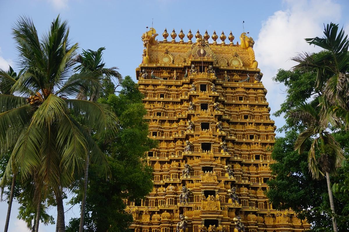 Cuore dello Sri Lanka