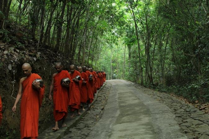 Sri Lanka - Tour cacciatori di emozioni ASIA