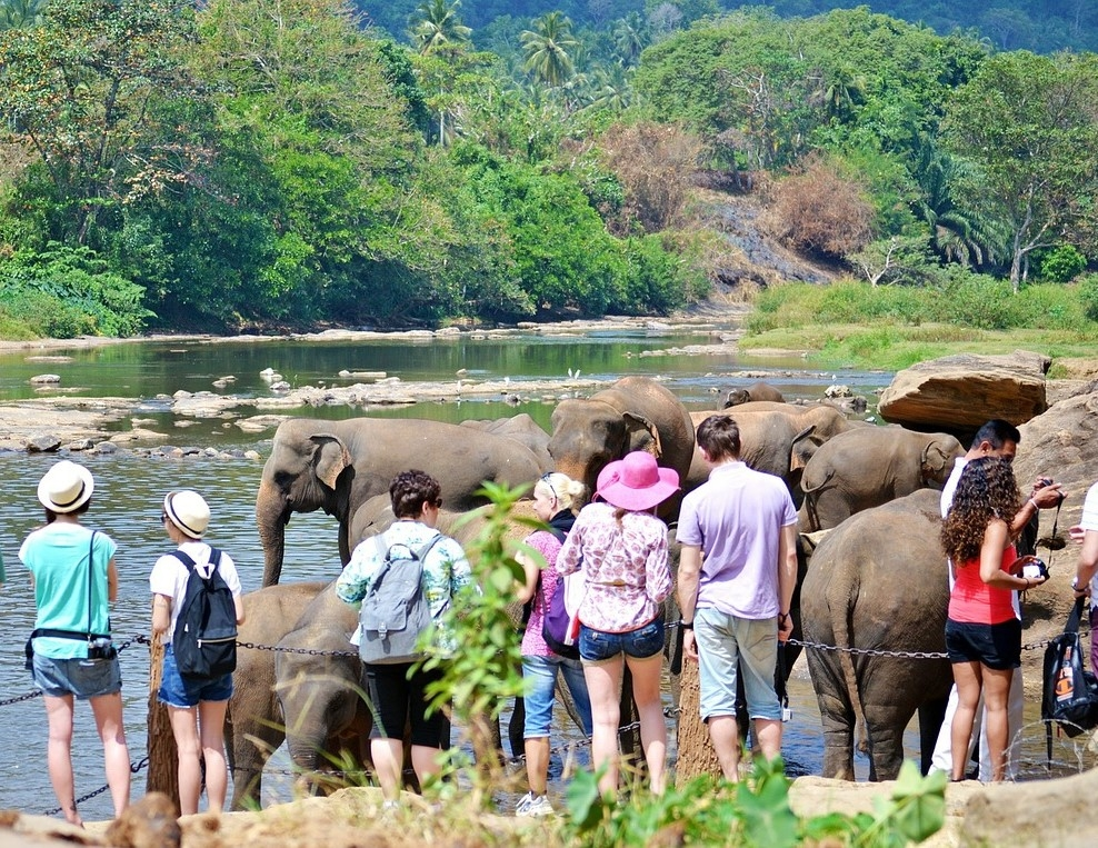 Sri Lanka - Tour l'isola delle meraviglie